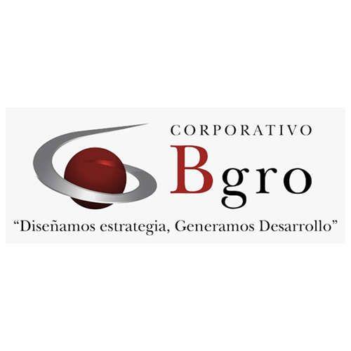 Más acerca de B GROWTH PROYECCION DE NEGOCIOS, S.C.