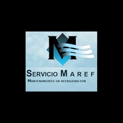 Más acerca de SERVICIOS MAREF
