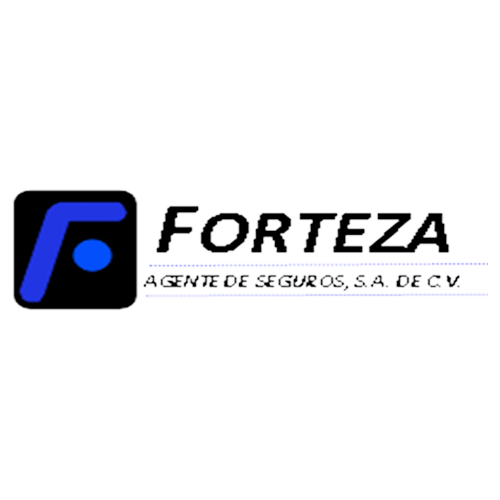 Más acerca de FORTEZA AGENTE DE SEGUROS, S. A.