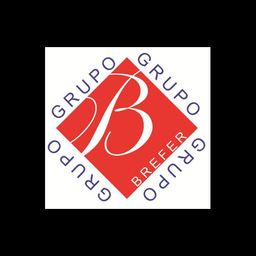 Más acerca de GRUPO BREFER, S. A. DE C. V.