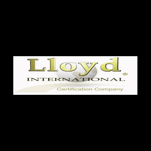Más acerca de LLOYD INTERNATIONAL, S. C.