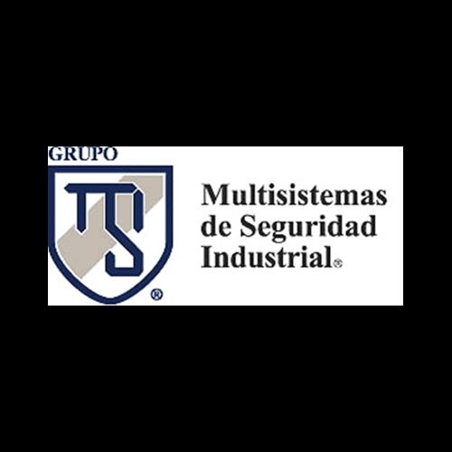 Más acerca de MULTISISTEMAS DE SEGURIDAD DEL VALLE DE MEXICO, S. A. DE C. V.