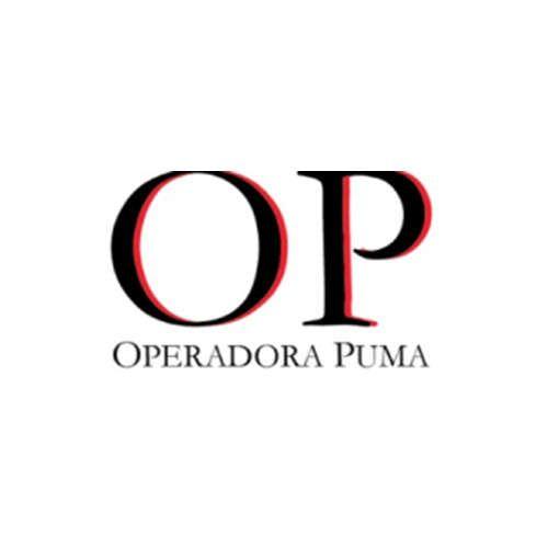 Más acerca de OPERADORA PUMA, SAPI DE CV
