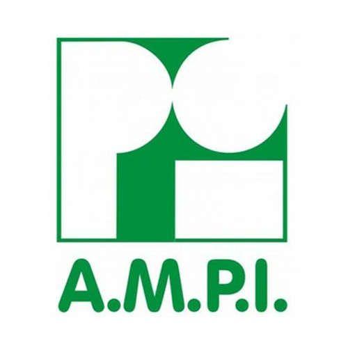 Más acerca de AMPI