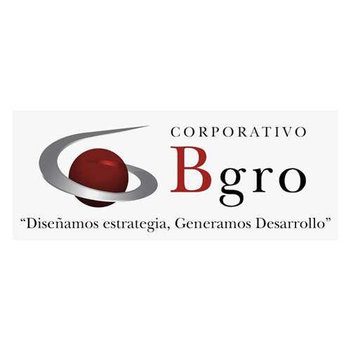 Más acerca de B GROWTH PROYECCIÓN DE NEGOCIOS, S. C.