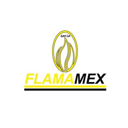 Más acerca de FLAMAMEX, S.A. DE C.V.
