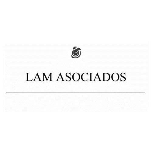 Más acerca de LAM ASOCIADOS