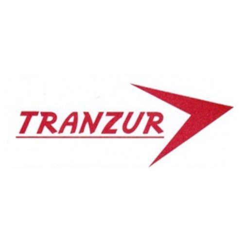 Más acerca de TRANSPORTES ZURIAGA SA DE CV